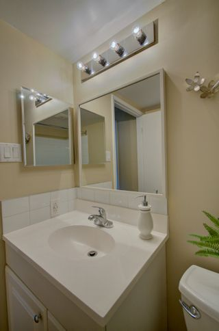 Photo 21: 309 8604 Gateway Boulevard in Edmonton: Zone 15 Condo for sale : MLS®# E4257711