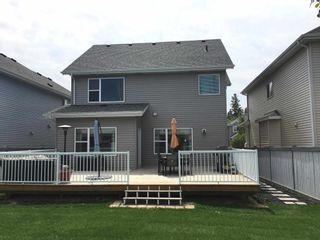 Photo 42: 8528 20 Avenue in Edmonton: Zone 53 House for sale : MLS®# E4255097