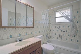 Photo 17: 2618 46 Street SE in Calgary: Forest Lawn Detached for sale : MLS®# A1146875