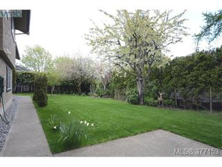 Photo 19: 4951 Thunderbird Pl in VICTORIA: SE Cordova Bay House for sale (Saanich East)  : MLS®# 757195