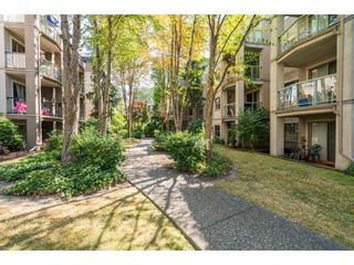 """Photo 19: 306A 2615 JANE Street in Port Coquitlam: Central Pt Coquitlam Condo for sale in """"BURLEIGH GREEN"""" : MLS®# R2190233"""