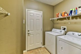 Photo 22: 199 Sagewood Drive SW: Airdrie Detached for sale : MLS®# A1119467