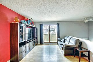 Photo 9: 1137 Berkley Drive NW in Calgary: Beddington Heights Semi Detached for sale : MLS®# A1136717