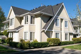 """Photo 14: 34 23560 119 Avenue in Maple Ridge: Cottonwood MR Townhouse for sale in """"HOLLYHOCK"""" : MLS®# R2004134"""