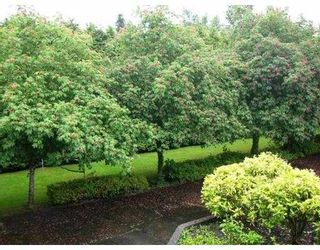 """Photo 2: 225 12170 222ND Street in Maple Ridge: West Central Condo for sale in """"WILDWOOD TERRACE"""" : MLS®# V1009553"""