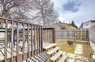Photo 41: 1137 Berkley Drive NW in Calgary: Beddington Heights Semi Detached for sale : MLS®# A1136717