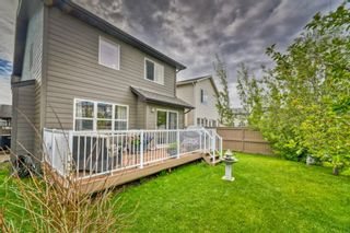 Photo 6: 32 SKYVIEW SPRINGS Gardens NE in Calgary: Skyview Ranch Detached for sale : MLS®# A1118652