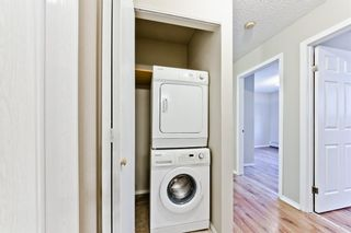 Photo 21: 103 11 Dover Point SE in Calgary: Dover Apartment for sale : MLS®# A1083330