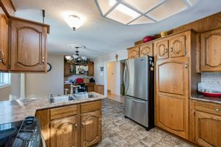 Photo 29: 57228 RGE RD 251: Rural Sturgeon County House for sale : MLS®# E4225650