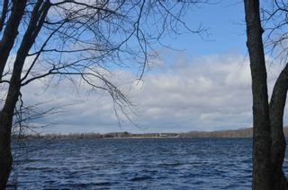 Photo 11: 195 Campbell Beach Road in Kawartha Lakes: Rural Carden House (Bungalow) for sale : MLS®# X4741548