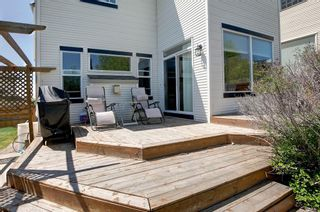 Photo 29: 223 Springborough Way SW in Calgary: Springbank Hill Detached for sale : MLS®# A1114099