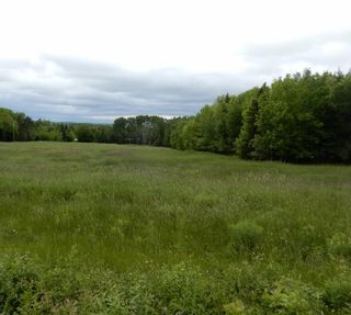 Photo 6: River John Road in Scotch Hill: 108-Rural Pictou County Vacant Land for sale (Northern Region)  : MLS®# 202115411