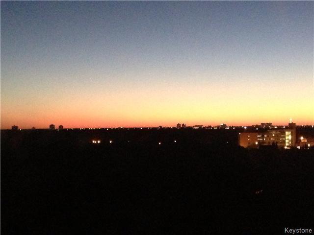 Photo 3: Photos: 246 Roslyn Road in Winnipeg: Osborne Village Condominium for sale (1B)  : MLS®# 1619975