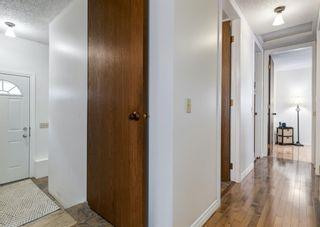 Photo 14: 387 Maitland Crescent NE in Calgary: Marlborough Park Detached for sale : MLS®# A1126572