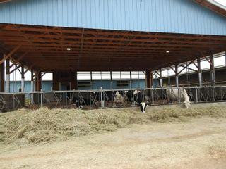 Photo 2: 4147 97 Highway, in Falkland: Agriculture for sale : MLS®# 10236595