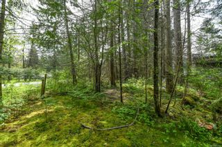 Photo 43: 3534 Royston Rd in : CV Courtenay South House for sale (Comox Valley)  : MLS®# 875936