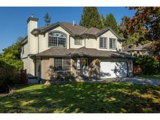 Photo 3: 23025 124B Street in Maple Ridge: East Central House for sale : MLS®# R2624726