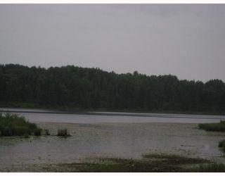 """Photo 3: # LOT 4 HOODOO LAKE BB in Prince_George: Nukko Lake Land for sale in """"NUKKO LAKE"""" (PG Rural North (Zone 76))  : MLS®# N184584"""