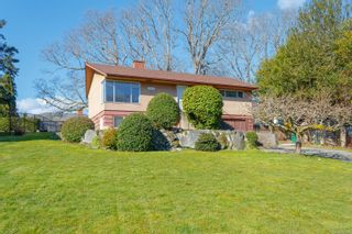 Photo 5: 3970 Bow Rd in : SE Mt Doug House for sale (Saanich East)  : MLS®# 869987