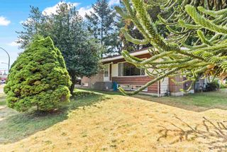 Photo 34: 2415 ADELAIDE Street in Abbotsford: Abbotsford West House for sale : MLS®# R2606943