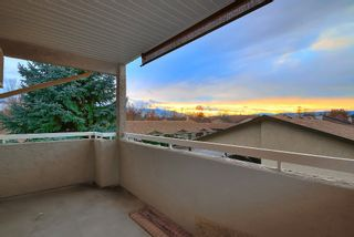 Photo 15: 280 3854 Gordon Drive in Kelowna: Lower Mission Other for sale (Okanagan Mainland)  : MLS®# 10091341