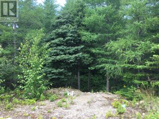 Photo 4: 11 Mitchview Estates in Conception Bay South: Vacant Land for sale : MLS®# 1232778