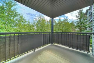 Photo 29: 141 1196 HYNDMAN Road in Edmonton: Zone 35 Condo for sale : MLS®# E4262588