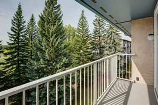 Photo 23: 406C 5601 Dalton Drive NW in Calgary: Dalhousie Apartment for sale : MLS®# A1146275