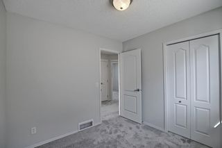 Photo 27: 253 Elgin Way SE in Calgary: McKenzie Towne Detached for sale : MLS®# A1087799