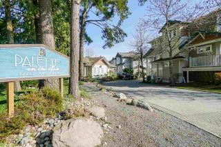 """Photo 1: 49 12711 64 Avenue in Surrey: West Newton Townhouse for sale in """"PALETTE ON THE PARK"""" : MLS®# R2560008"""