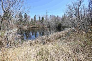 Photo 5: Lots North Range Cross Road in Barton: 401-Digby County Vacant Land for sale (Annapolis Valley)  : MLS®# 202110298