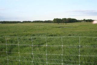 Photo 8: 27232 TWP RD 511: Rural Parkland County House for sale : MLS®# E4254971