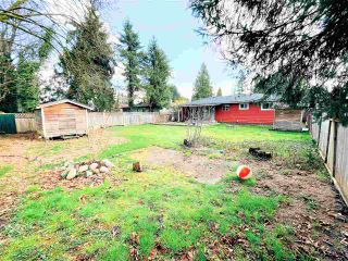 Photo 18: 11613 STEEVES Street in Maple Ridge: Southwest Maple Ridge House for sale : MLS®# R2556127