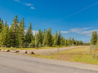 Photo 15: 20 34364 RANGE ROAD 42: Rural Mountain View County Land for sale : MLS®# A1017805
