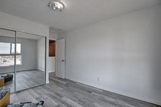Photo 19: 6636 Temple Drive NE in Calgary: Temple Semi Detached for sale : MLS®# A1085203