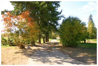 Photo 48: 4820 Northeast 30 Street in Salmon Arm: North Broadview House for sale (NE Salmon Arm)  : MLS®# 10143037