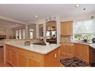 Photo 10: 16646 61 AV in Surrey: Cloverdale BC House for sale (Cloverdale)  : MLS®# F1446236