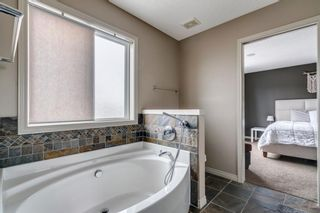 Photo 22: 9 Copperfield Point SE in Calgary: Copperfield Detached for sale : MLS®# A1100718