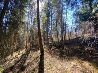 Photo 12: Lot L VIEW RIDGE ROAD in Nelson: Vacant Land for sale : MLS®# 2460797