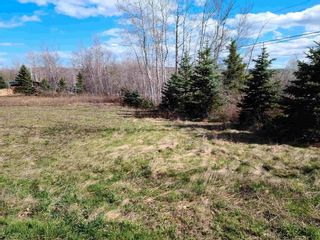 Photo 7: 35 Valley Road in Westchester Station: 103-Malagash, Wentworth Vacant Land for sale (Northern Region)  : MLS®# 202109984