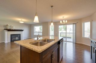 Photo 16: 9266 212 Street in Edmonton: Zone 58 House for sale : MLS®# E4249950