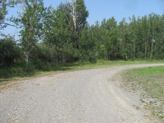 Photo 4: 515 Morrison ST NW: Turner Valley Land for sale : MLS®# C4201085