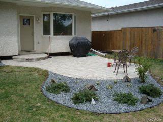 Photo 15: 114 Beechtree Crescent in WINNIPEG: St Vital Residential for sale (South East Winnipeg)  : MLS®# 1512269