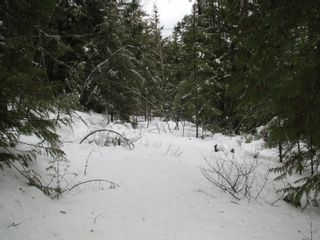 Photo 10: Lot 1 Trans Can Hwy: Blind Bay Land Only for sale (Shuswap)  : MLS®# 10148323
