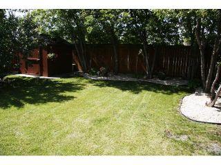 Photo 18: 143 Abbotsfield Drive in WINNIPEG: St Vital Residential for sale (South East Winnipeg)  : MLS®# 1013446