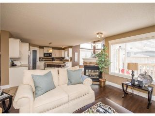 Photo 9: 34 CHAPALA Court SE in Calgary: Chaparral House for sale : MLS®# C4108128