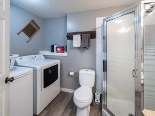 Photo 24: 139 Springs Crescent SE: Airdrie Detached for sale : MLS®# A1065825