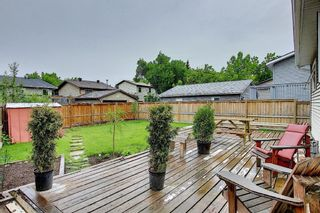 Photo 25: 52 Mckenna Road SE in Calgary: McKenzie Lake Detached for sale : MLS®# A1114458