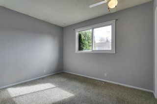 Photo 15: 4763 Rundlewood Drive NE in Calgary: Rundle Detached for sale : MLS®# A1107417