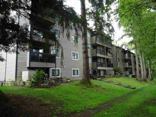 """Photo 4: 105 10560 154 Street in Surrey: Guildford Condo for sale in """"CREEKSIDE"""" (North Surrey)  : MLS®# R2574460"""